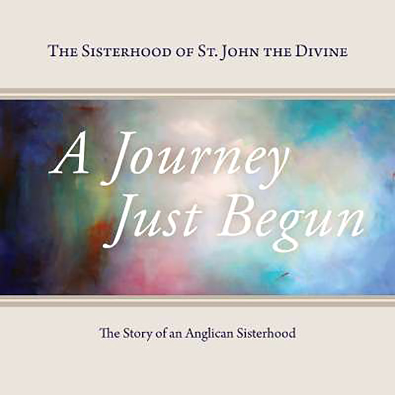 A Journey Just Begun book cover image